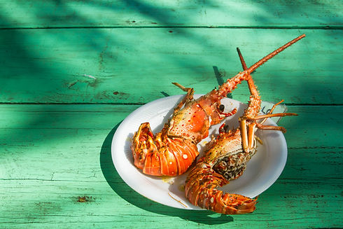 Seafood, Grenada, SIFH, Spice Isle, Caribbean Lobster, Conch