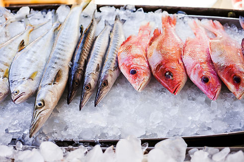 Seafood, Grenada, SIFH, Spice Isle, Caribbean Seafood