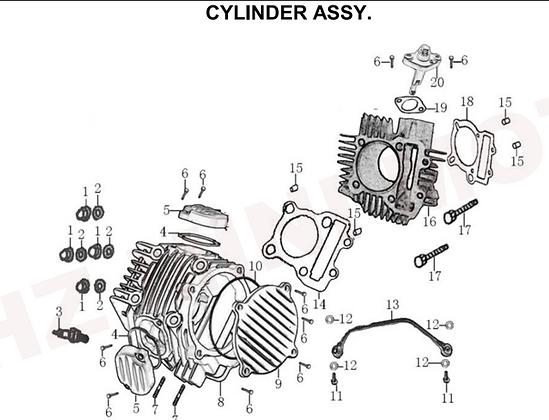 Cylinder Head & Cylinder Assy
