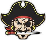 1200-165695642-pirate-head.jpg