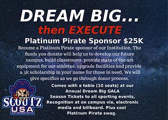 Platinum Pirate Sponsor.png