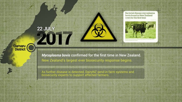 DairyNZ - M.Bovis eradication