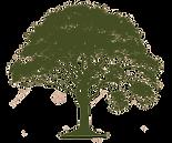 Homepage_tree.png