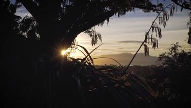 Mapua Homestay