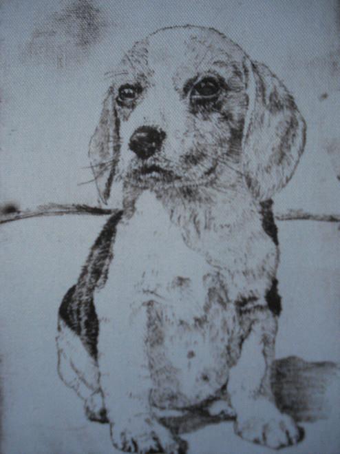 Puppy Dog - Waterless Litho