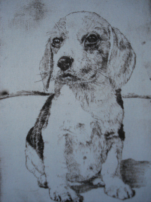 Puppy Dog - Waterless Litho