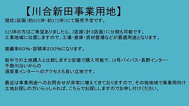 川合新田土地概要.jpg