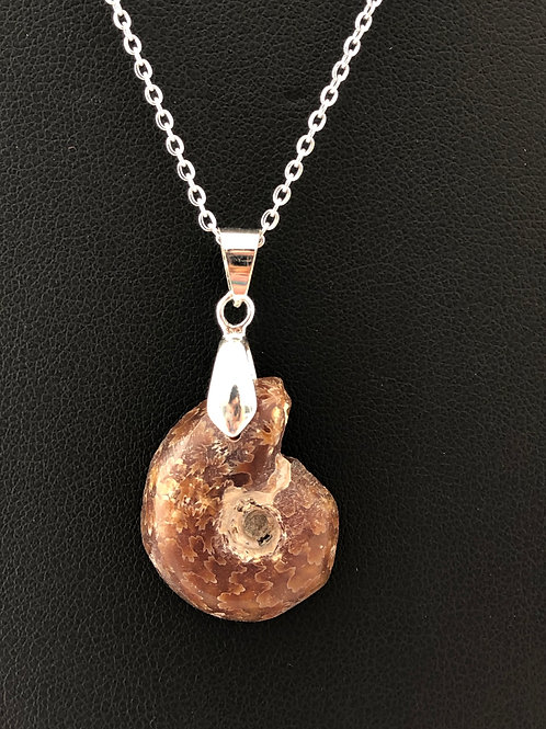 19N18 - Ammonite Necklace