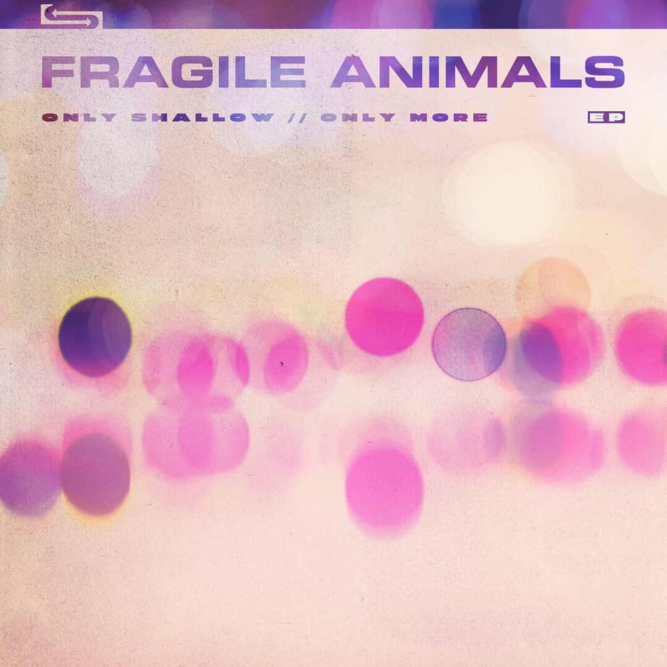 FRAGILE ANIMALS - ONLY SHALLOW / ONLY MORE (EP)