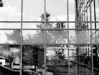 _BW - Westmount Public Library.jpg