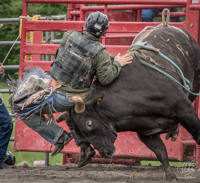 When the rodeo came to NJ