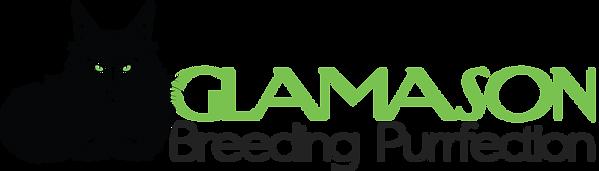 glamason_logo_transparent.png