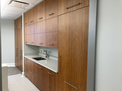 Modern Commercial Cabinet