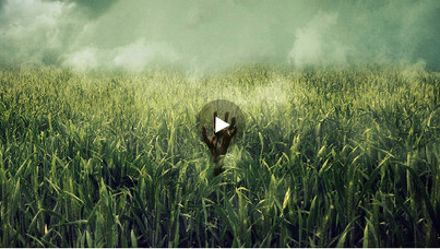 IN THE TALL GRASS :: DEADLY AVENGER