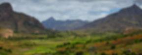 Rýžová pole, Madagaskar