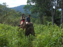 Projížďka na slonovi