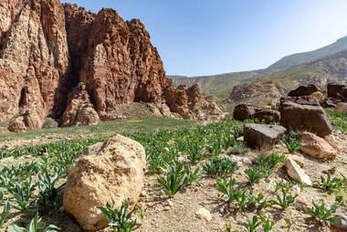 CK HAMIDI outdoorový zájezd do Jordánska: Rezervace Dana
