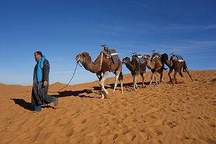 CK HAMIDI - Jižním Marokem za Berbery: Egg Chebbi