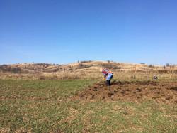 Tradiční práce na polích