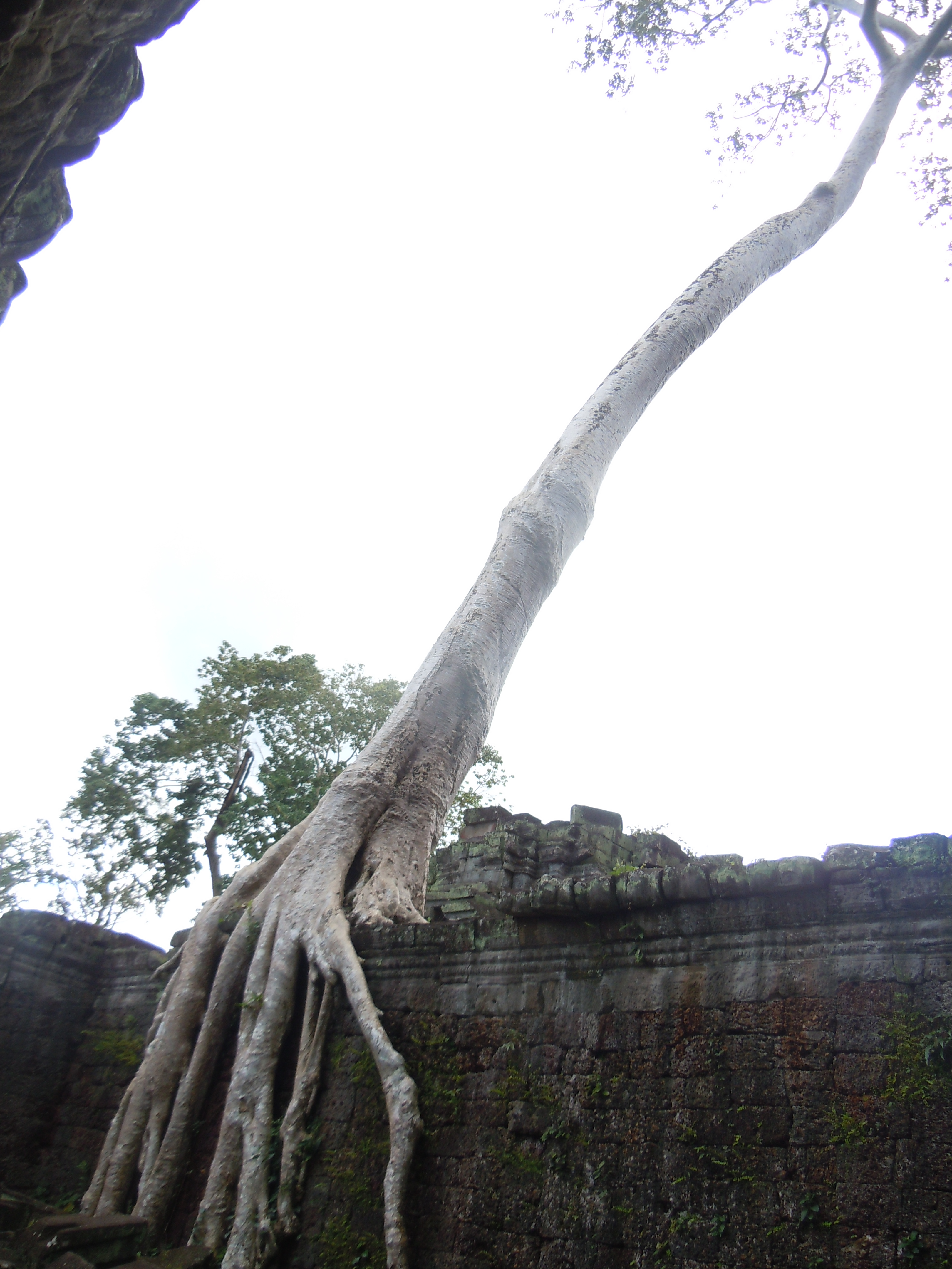 i se stovkami let starým chrámem
