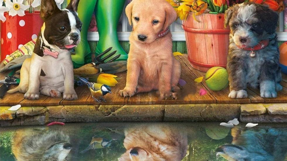 Reflectie dieren
