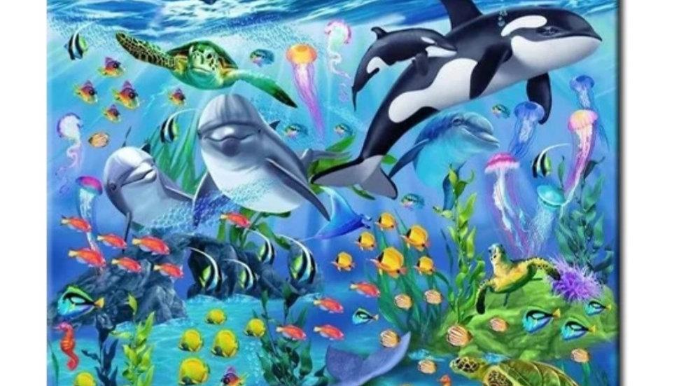 Dolfijnen&Orka's