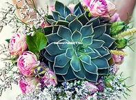 Vetplant en bloemen