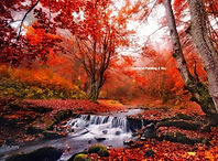 Herfst