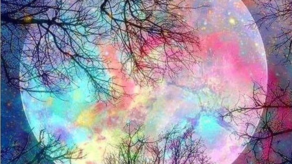 Gekleurde maan en takken