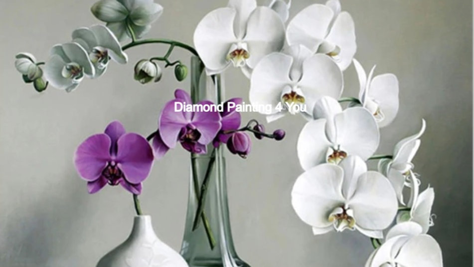 Orchideen wit-paars