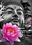 Boeddha Zilver