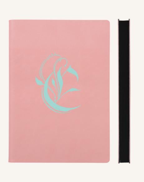 Pink x Aqua