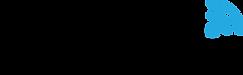 GoodFi_Logo_flat_Black.png