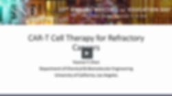 CAR T cell therapy - Yvonne Chen.png