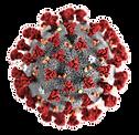logo-coronavirus.png