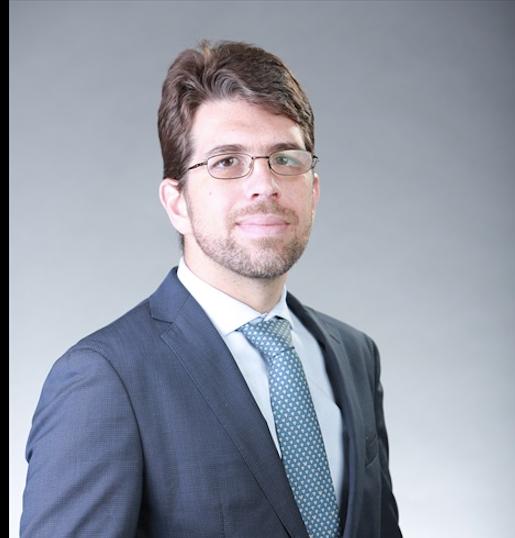 Dr. Luis Augusto Palma Dallan