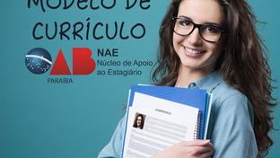 NAE disponibiliza modelo de currículo