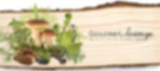 GourmetSauvage-CertificatCadeaux-Rectof1