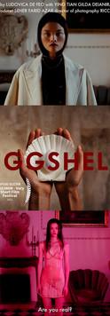 Eggshell.jpeg