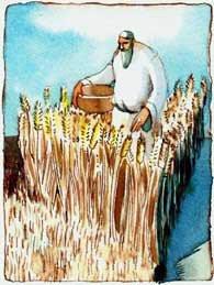 Dvar Torah - Emor