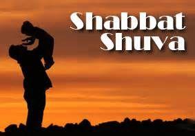 Dvar Torah - Vayelech Shuva