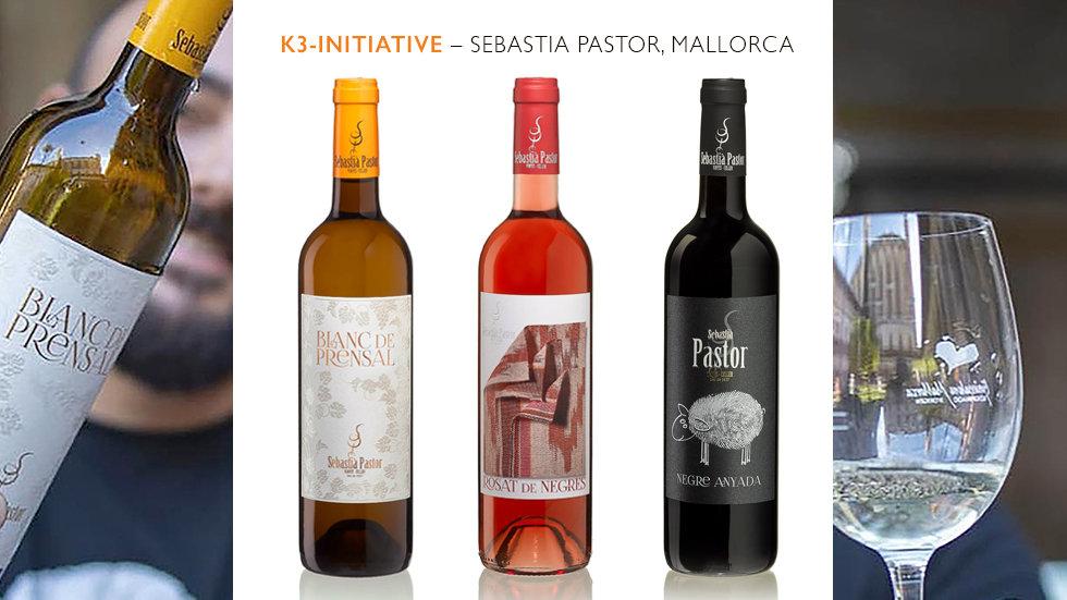 KLEINES SOFORTHILFE-PAKET –  3 Flaschen Sebastià Pastor, inklusive Versandkosten