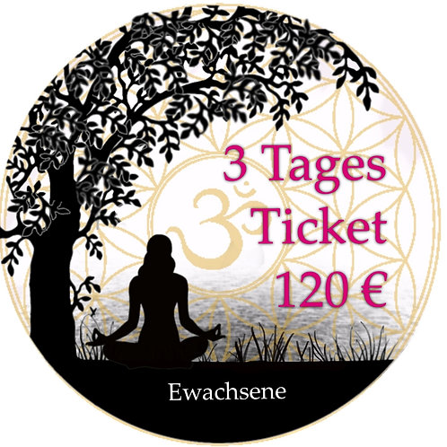 3 Tages Ticket Erwachsene 19.-21.06.2020
