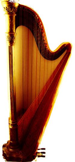 Kansas City Harpist
