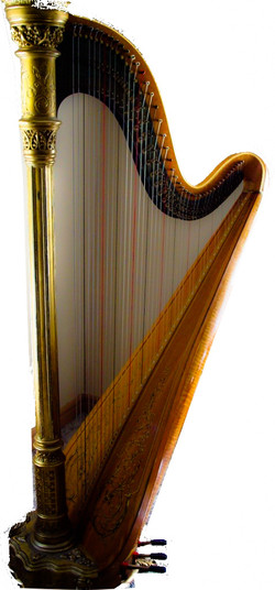 free harp lesson