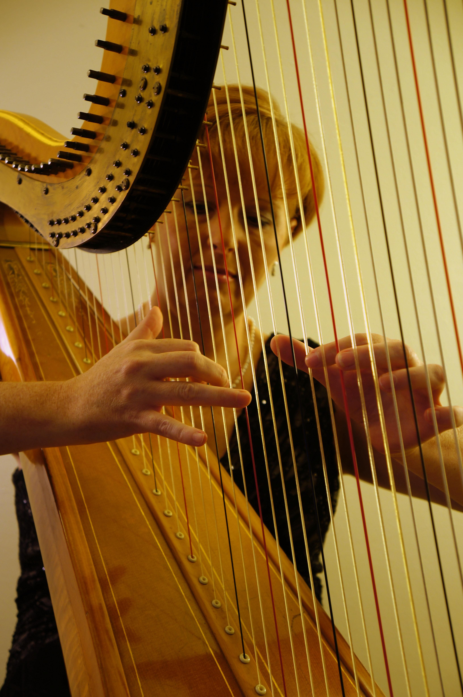 Harp Lessons