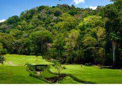 Rainforest Golf