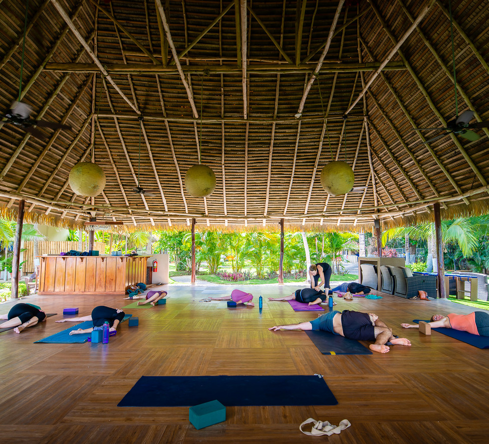 Free yoga.jpg