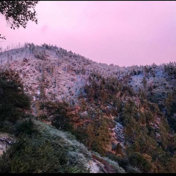 hsr winter.jpg