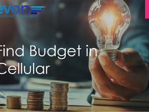 Webinar: Find Budget in Your Cellular Services